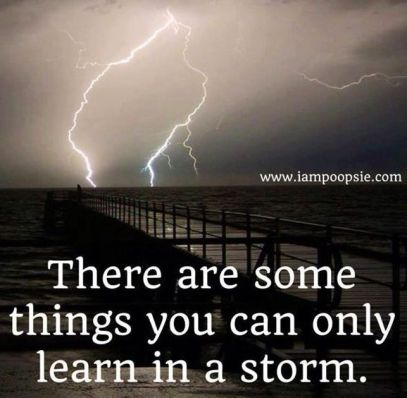 storm-quotes-lightning