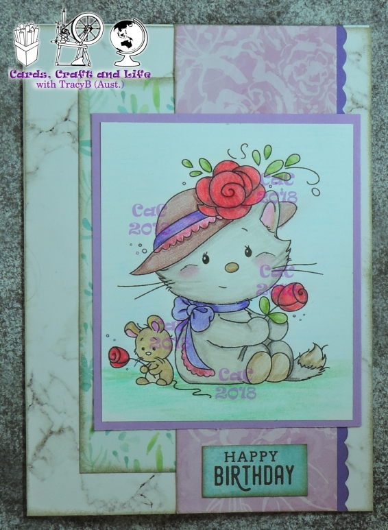cats-birthday-april2018-e1524965267287.jpg