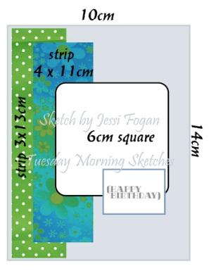 TMS 485.jpg