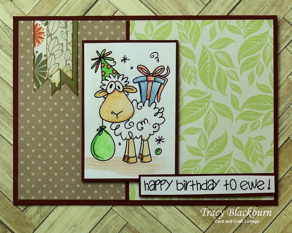 11 24 Ewe Birthday