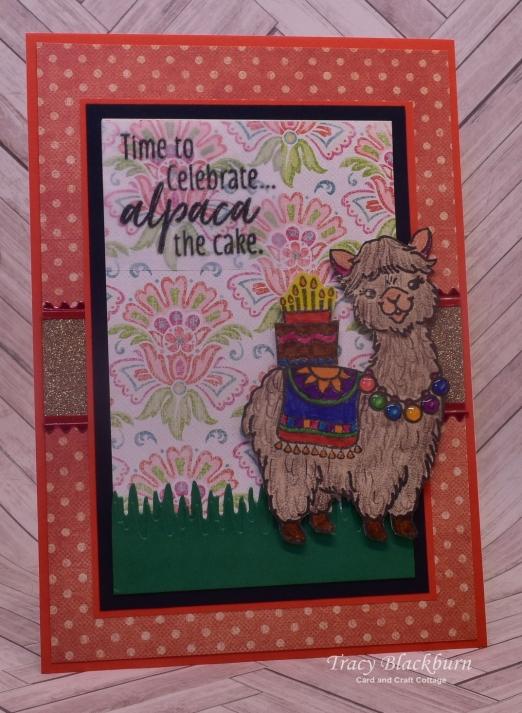 05 13 Alpaca Cake